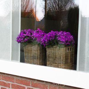Set vensterbankmanden/ opbergmandjes