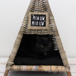 Kattenmand piramide