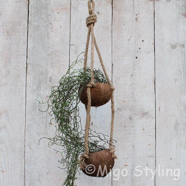 Kokosnoot plantenhanger 2 cups